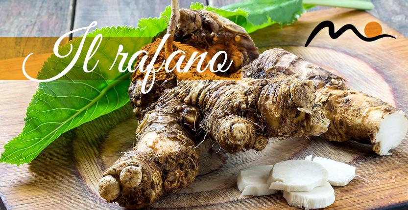 Rafano News