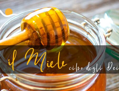 """Il miele: proprietà e benefici del """"cibo degli dei""""."""